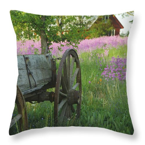 Antique Throw Pillow featuring the photograph Old Buckboard by Bruce Thompson