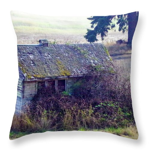 Barns Throw Pillow featuring the photograph Old Homestead by Mike Wheeler