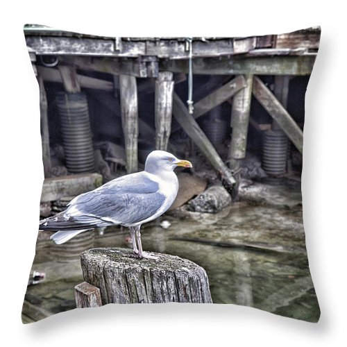 Architectural Throw Pillow featuring the photograph On The Waterfront by Richard Bean