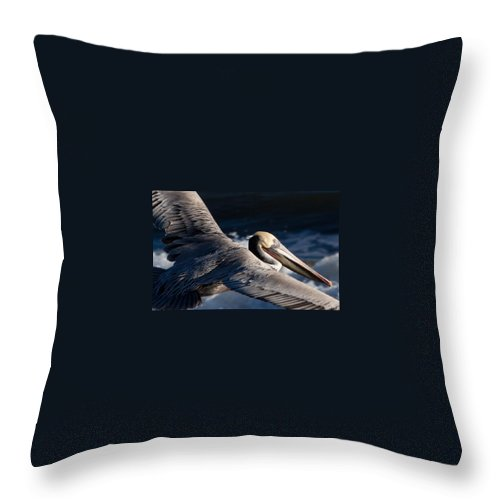 Pelican Throw Pillow featuring the photograph Pelican Flight by John Daly