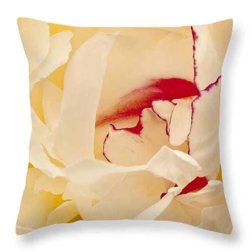 Flowers Throw Pillow featuring the photograph Peony by Steven Ralser