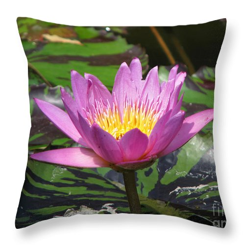 Lily Throw Pillow featuring the photograph Pond Series by Amanda Barcon