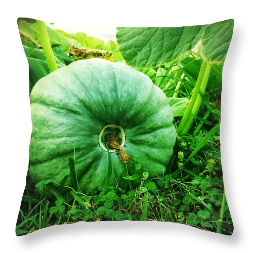 Agriculture Throw Pillow featuring the photograph Pumpkin by Les Cunliffe