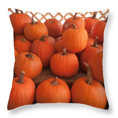 Agriculture Throw Pillow featuring the photograph Pumpkins On Pumpkin Patch by Alex Grichenko