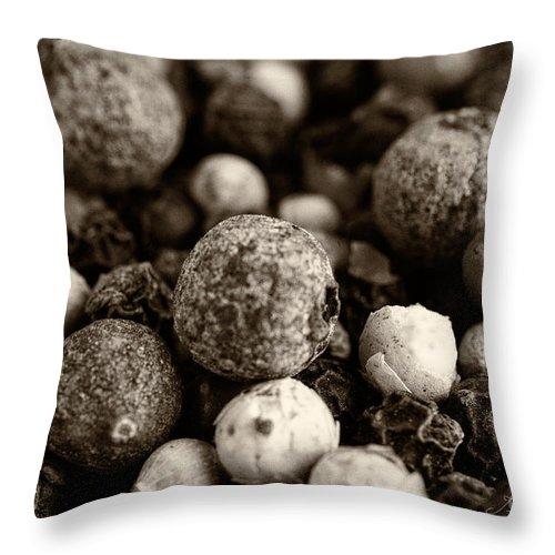 Iris Holzer Richardson Throw Pillow featuring the photograph Rainbow Peppercorn Macro by Iris Richardson