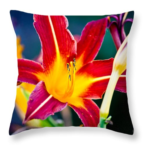 Nature Throw Pillow featuring the photograph Red And Yellow Lily by Ms Judi