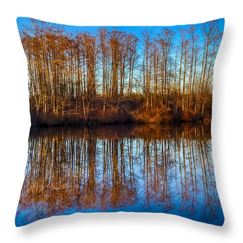 Landscape Throw Pillow featuring the photograph Reflections by Robert Mullen