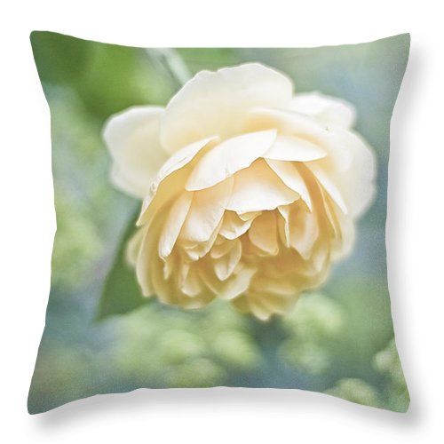 Rose Throw Pillow featuring the photograph Romance by Maria Ismanah Schulze-Vorberg