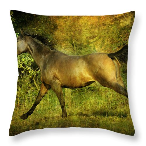 Horses Throw Pillow featuring the photograph Running Free by Angel Ciesniarska