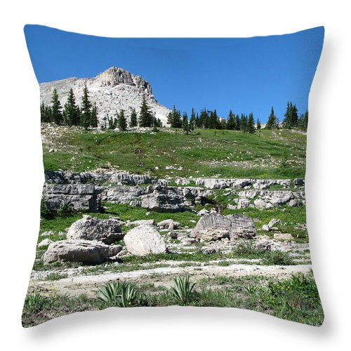 Scapegoat Amphitheater Throw Pillow featuring the photograph Scapegoat Amphitheater by Pam Little