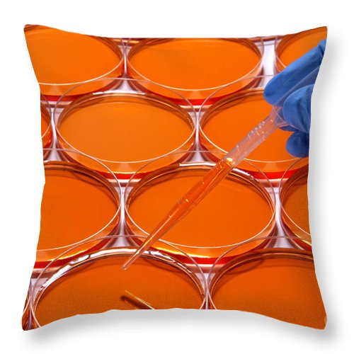 Lab Throw Pillow featuring the photograph Scientific Experiment In Science Research Lab by Science Research Lab By Olivier Le Queinec