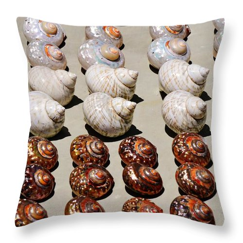 Close Up; Beautiful; Sea Shells; Spiral; White; Orange; Brown; Marine Mollusks; Beach; Sand; Atlantic Ocean; South Africa; Exoskeleton; Invertebrate; Background; Decorative; Detail; Throw Pillow featuring the photograph Sea Shells by Werner Lehmann