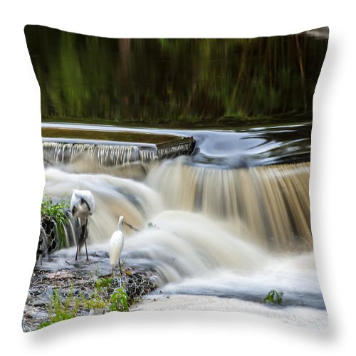 Throw Pillow featuring the photograph 1 Second by Rich Franco