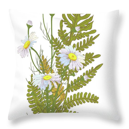 Flowerbed Throw Pillow featuring the digital art Set Of Chamomile Daisy Bouquets White by Olga Ivanova