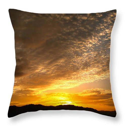 Oregon Throw Pillow featuring the photograph You Seem So Far Away by Katie Wing Vigil