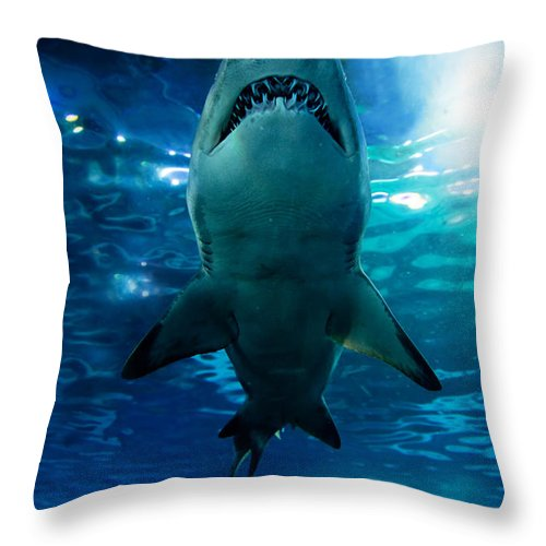 Sea Throw Pillow featuring the photograph Shark Silhouette Underwater by Michal Bednarek