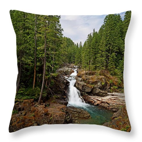 Waterfall Throw Pillow featuring the photograph Silver Falls by Angie Vogel