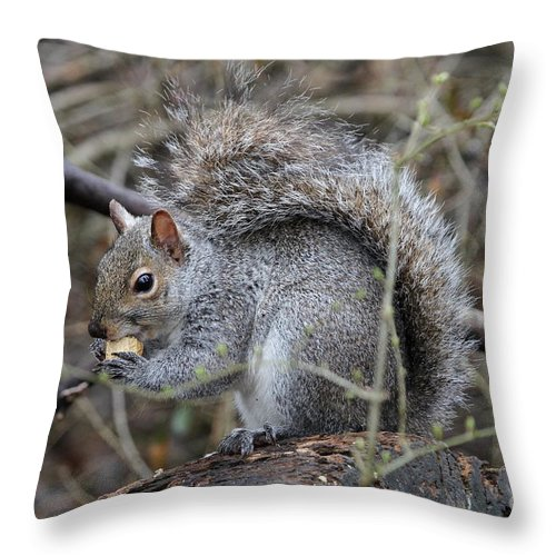 Squirrel Throw Pillow featuring the photograph Squirrel With Peanut by Ken Keener