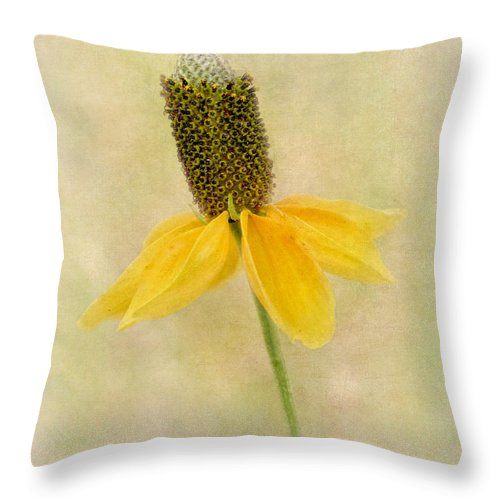 Botany Throw Pillow featuring the photograph Standing Proud by David and Carol Kelly