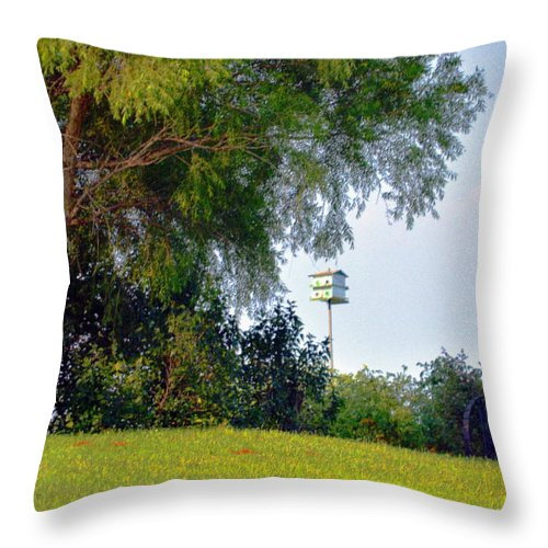 Birdhouse Throw Pillow featuring the photograph Summer Home by Kim Blaylock