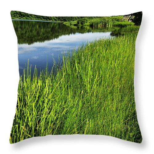 Big Ditch Lake Throw Pillow featuring the photograph Summer Morning by Thomas R Fletcher