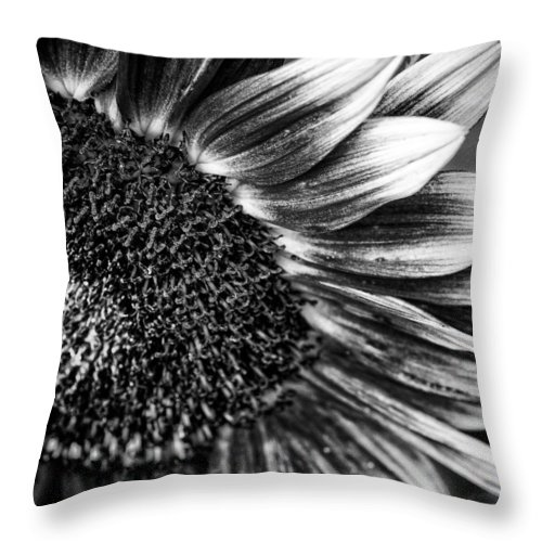 Agriculture Throw Pillow featuring the photograph Sunflower by Joel Bourgoin