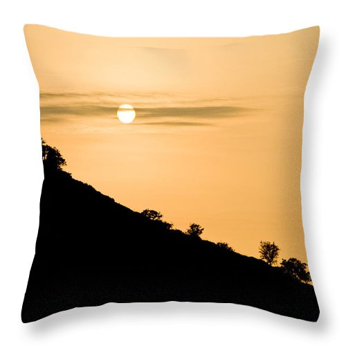 Backgrounds Throw Pillow featuring the photograph Sunset Golden Color With Tree by Raimond Klavins