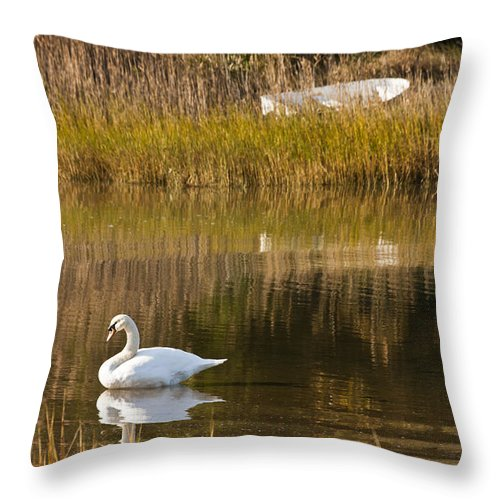 Swan Throw Pillow featuring the photograph Swan And Boat by Dennis Coates