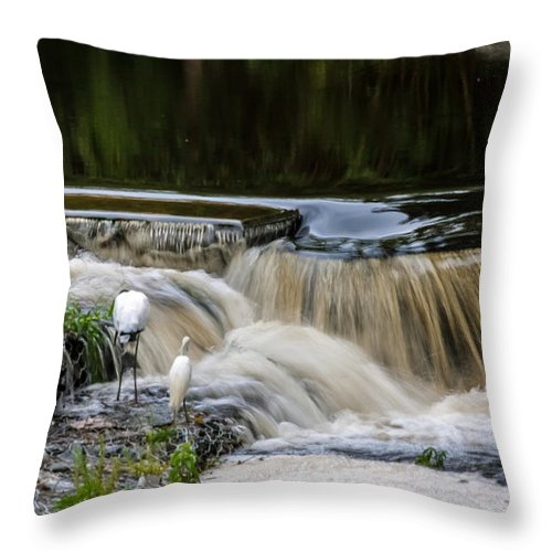 Throw Pillow featuring the photograph 1 Tenth Second by Rich Franco