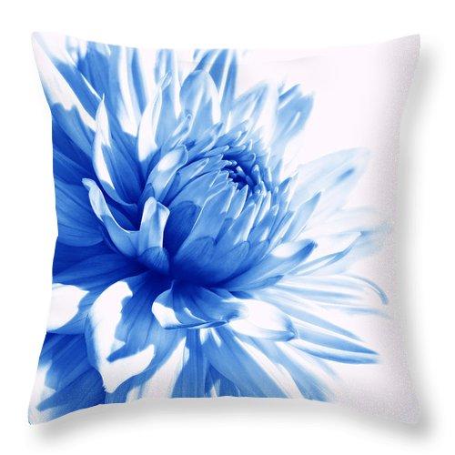 Dahlia Throw Pillow featuring the photograph The Blue Dahlia Flower by Jennie Marie Schell