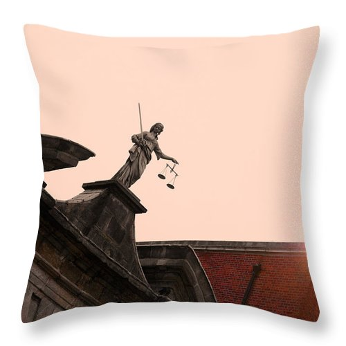 Feature Throw Pillow featuring the photograph The Feature by Alex Art and Photo