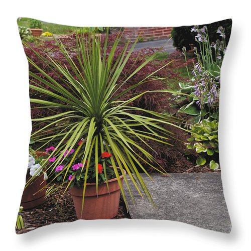 Fern Throw Pillow featuring the photograph The Gathering by William Norton