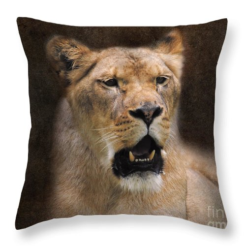 Animal Throw Pillow featuring the photograph The Lioness by Jai Johnson