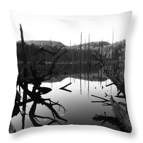 Pond Throw Pillow featuring the photograph The Mirror Pool by Jeff Kantorowski