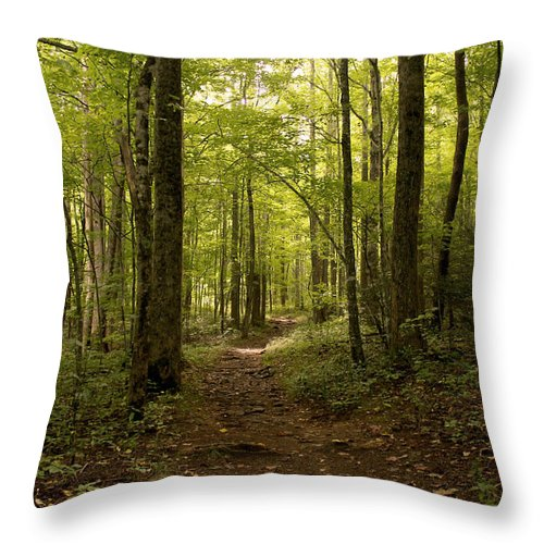 Paths Throw Pillow featuring the photograph The Road Less Traveled by Amy Warr