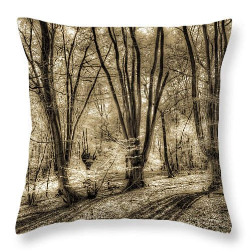Forest Throw Pillow featuring the photograph The Spring Forest by David Pyatt