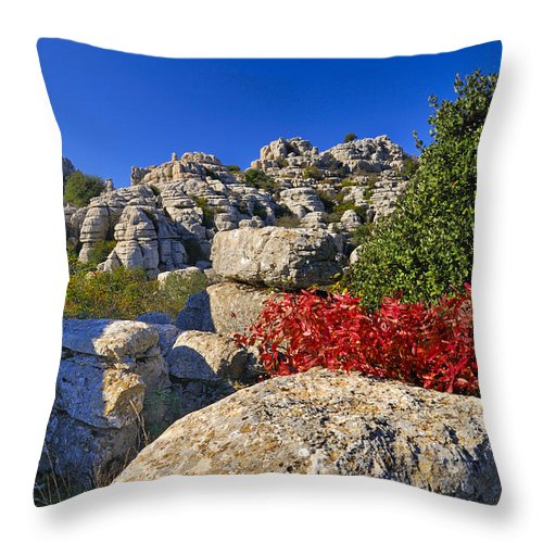 Blue Throw Pillow featuring the photograph Torcal by Guido Montanes Castillo