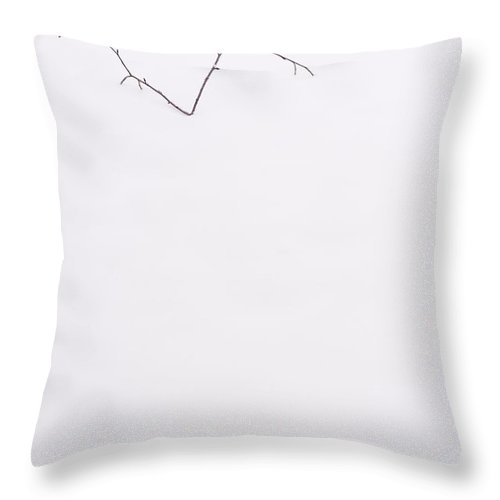 Pacific Northwest Throw Pillow featuring the photograph Tree Limb In Snow by Jim Corwin