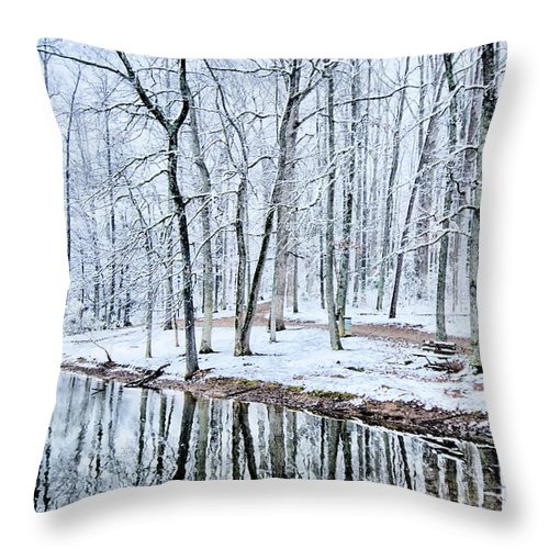 Tree Line Throw Pillow featuring the photograph Tree Line Reflections In Lake During Winter Snow Storm by Alex Grichenko