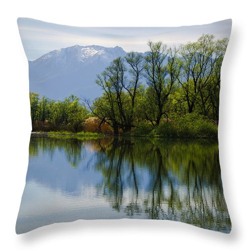 Trees Throw Pillow featuring the photograph Trees And Lake by Mats Silvan
