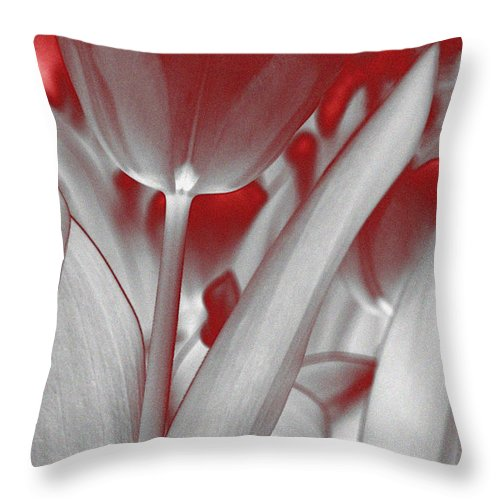 Abstract Throw Pillow featuring the photograph Tulip Abstract by KM Corcoran