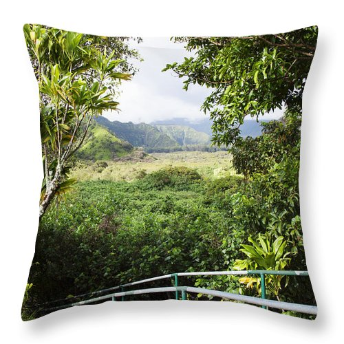 Beautiful Throw Pillow featuring the photograph Wailua Valley State Wayside by Jenna Szerlag