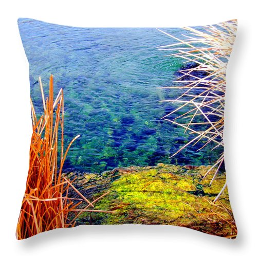 Water Throw Pillow featuring the photograph Water by Marilyn Diaz