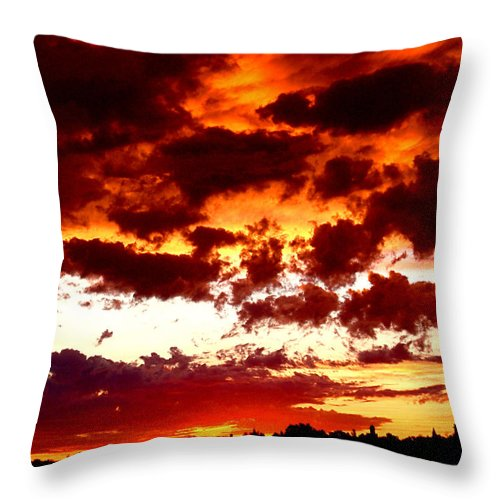 Brown Throw Pillow featuring the photograph Weather by Rona Black