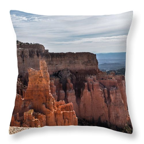 Brown Throw Pillow featuring the photograph Weathered By Time by Rich Priest