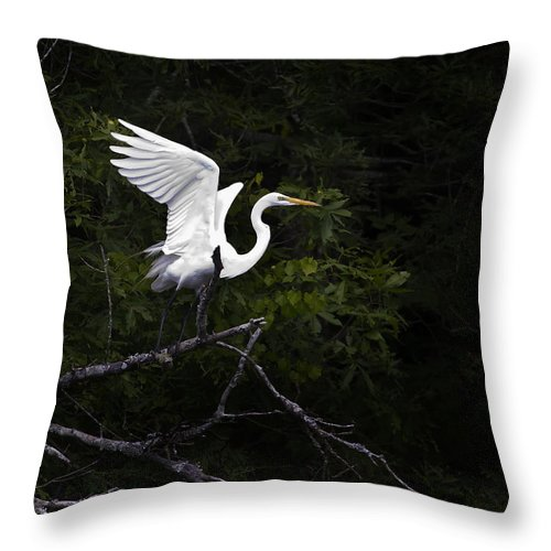 Bird Throw Pillow featuring the photograph White Egret's Takeoff by J L Woody Wooden