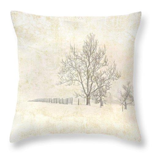 Winter Snow Throw Pillow featuring the digital art Winter On The Farm by Pamela Baker