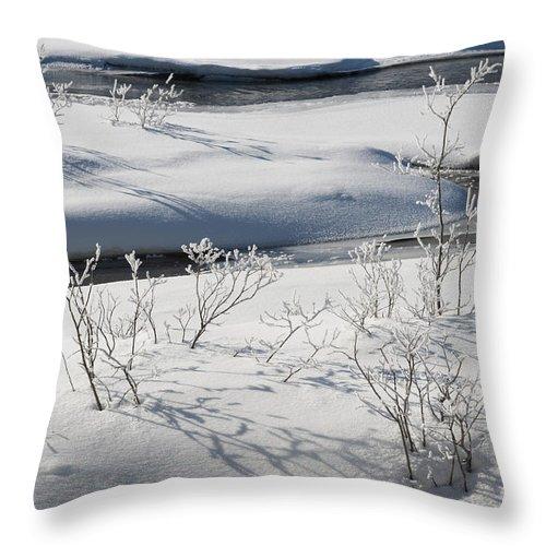 Nature Throw Pillow featuring the photograph Winter Stream, Jasper National Park by John Shaw