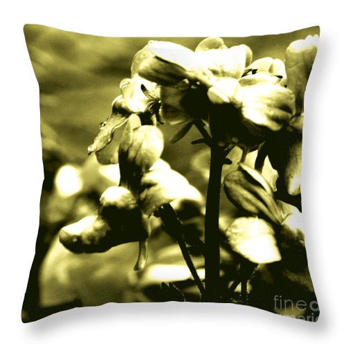 Jamie Lynn Gabrich Throw Pillow featuring the photograph Woeful by Jamie Lynn