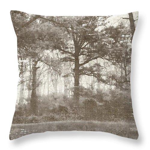 Brett Throw Pillow featuring the digital art Woodland by Brett Pfister